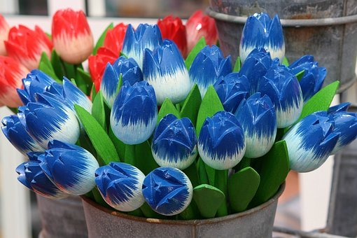 Tulips, Wooden Tulips, Decoration, Red, Blue