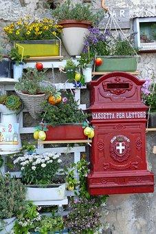 Agropoli, Italy, Mediterranean, Cilento, Flowers