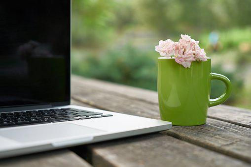 Flower, Glass, Laptop, Computer, Technology, Free, Rose