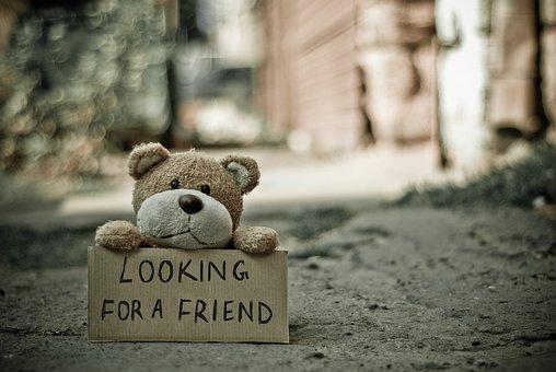 Cuddly Toy, Plush Toy, Teddy Bear, Handwriting, Lonely