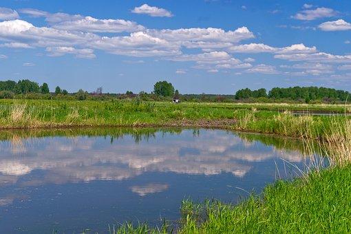 Nature, Water, Sky, Blue, Landscape, Summer, Lake