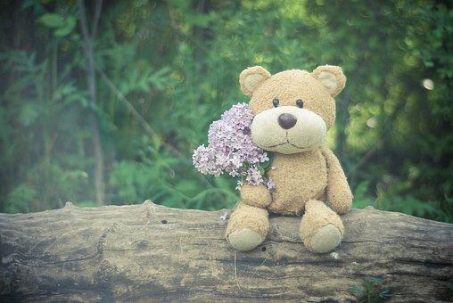 Plush Toy, Teddy Bear, Wood, Summer, Flower, Bloom