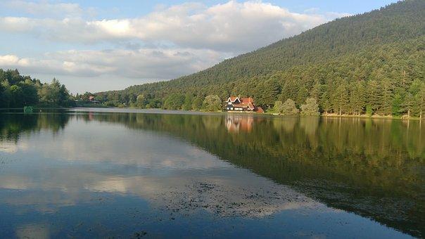 Pond, Lake, Forest, Bolu, Panoramic, Landscape
