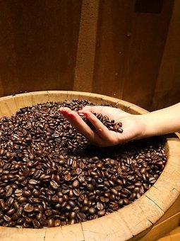 Coffee Grain, Coffee Bean, Coffee