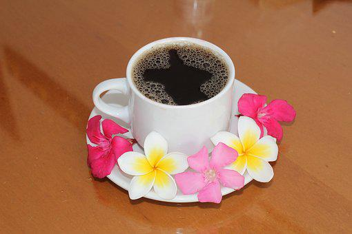 Coffee, Cup, Drink, Aroma, Morning, Flowers, Romance