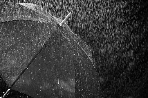 Rain, Umbrella, Screen, Protection, Water, Wet, Drip