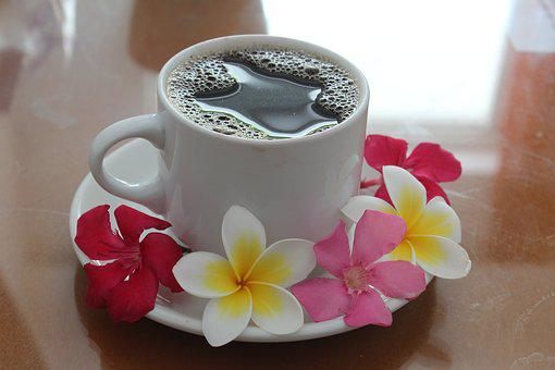 Coffee, Cup, Drink, Aroma, Flowers, In The Morning