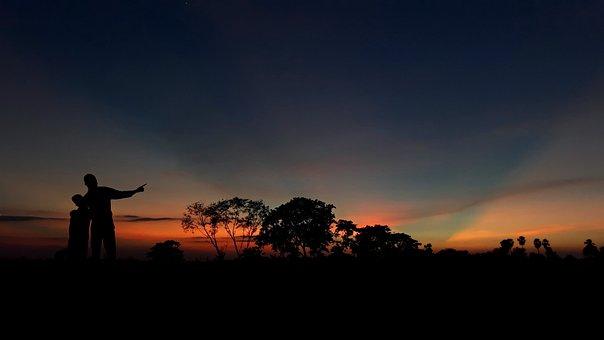 Landscape, Tree, Sunset, Sunrise, Morning, Evening