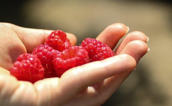 Raspberries, Raspberry, Berry, Pink, Red, Summer, Fruit