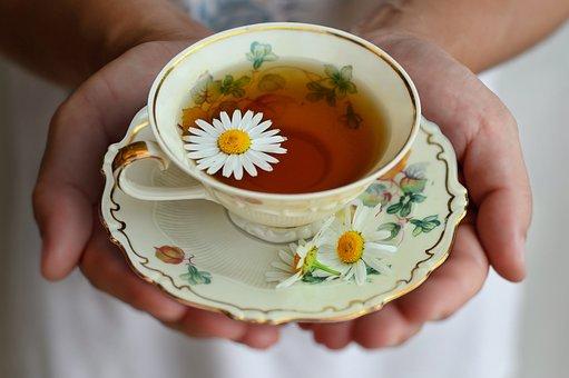 Cup, Tea, Porcelain, Drink, Decor, Break, Still Life