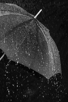 Rain, Umbrella, Screen, Protection, Water, Wet, Drip