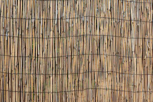 Wall, Divider, Hawaii, Wood, Bamboo, Reeds