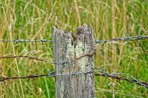 Barbed Wire, Post, Old, Pile, Fence, Demarcation