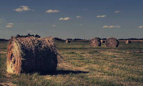 Field, Bale, Straw, Sky, Landscape, Hay, Rural, Clouds