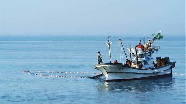 Fisherman, Gangneung, Fishing, Jiangmen Beach, Travel