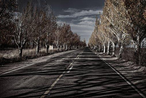 Route, Mendoza, Argentina, Travel, Landscape, Road