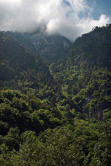 Mountains, Nature, Landscape, Clouds, Forests