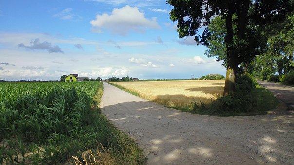 Village, Poland, Nature, Landscape, Field, Summer, Sky