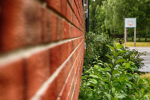 Outdoors, Building, Brick Wall, Plant