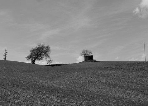Tuscany, Siena, Italy, Silence, Field, Relaxation