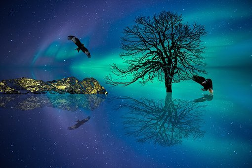 Aurora, Arctic, Night, Nature, Northern Lights, Star
