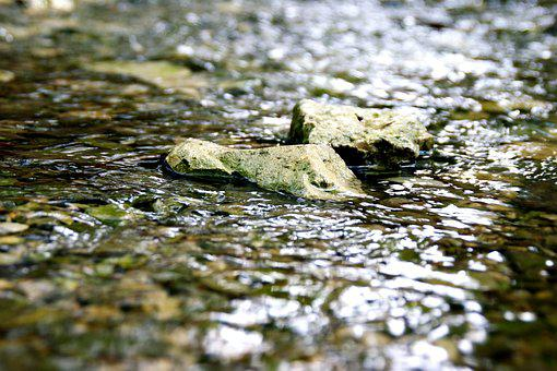 Stones, River, Water, Nature, Flowing, Wilderness