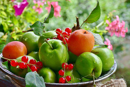 Fruit, Apple, Apricots, Currants, Fresh, Healthy, Ripe