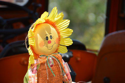 Scarecrow, Decoration, Country, Sunflower