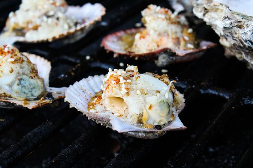 Gourmet, Barbecue, Oysters, Grilled Oysters