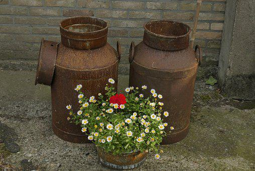 Churns, Old, Antique, Vintage, Nostalgia, Flowers, Farm
