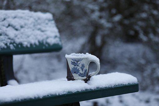 Wintry, Cup, Bank, Coffee Break, Nature, Outdoor, Rest