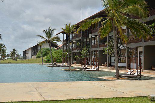Hotel, Palm, Swimming Pool, Summer, Holiday, Water