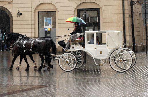 Cab, Four Of A Kind, Horses, Transport, Tourism, Tour