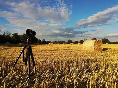 Straw, Straw Bales, Stubble, Field, Photograph