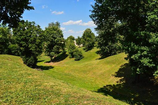 Nature, Ravine, Summer, Meadow, Trees, Landscape