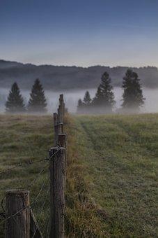 Pasture Fence, Morning Mist, Fog, Landscape, Nature