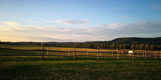 Nature, Fence, Wood, Grass, Field, Sky, Mood, Scenic
