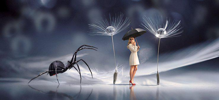 Fantasy, Spider, Woman, Umbrella, Encounter, Scene