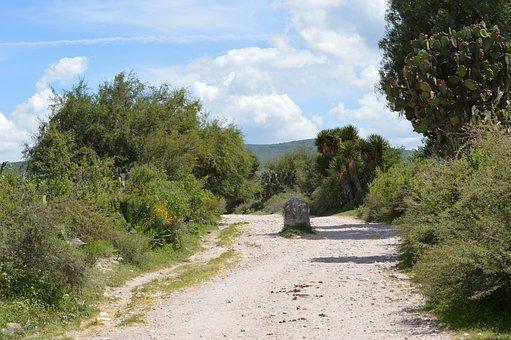 Path, Boundary, Warning, Nature