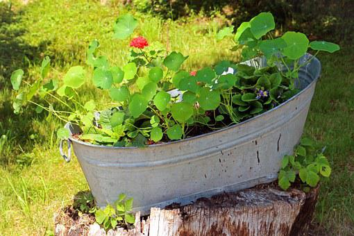 Tub, Flowers, Bucket, Decoration, Planters, Deco