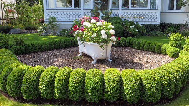 Tub, Decoration, Front Yard, Eye Catcher, Flowers