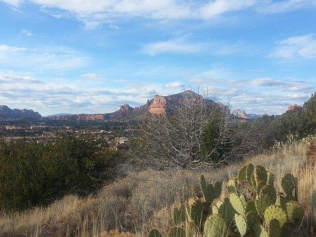 Sedona, Arizona, Castle Rock, Red Rocks, Desert, Cactus