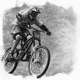 Sport, Bike, Tire, Wheel, Inner Tubes, Spokes, Tourism