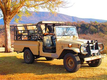 Safari, Jeep, Vehicle, Offroad, Off Road, Park