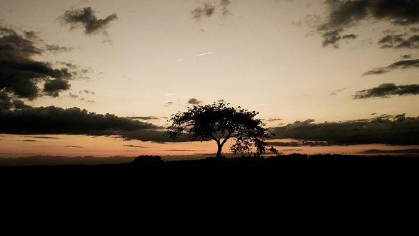 Mood, Tree, Sunset, Romantic, Mystical, Abendstimmung