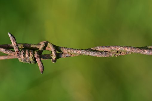 Barbed Wire, Rust, Fence, Wire, Metal, Security, Risk