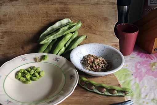 Peeled Broad Beans, Broad Beans, Field Beans, Bean
