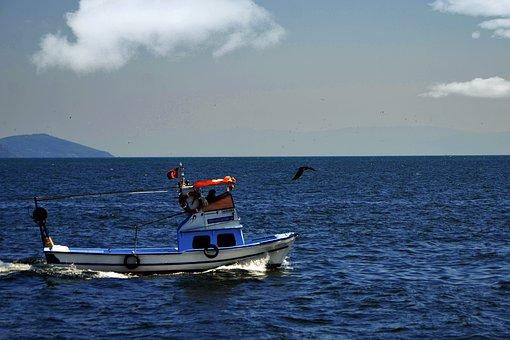 Boat, Marine, Blue, Water, Shovel, Ocean, Summer