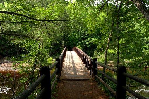 Bad River Foot Bridge, Bridge, Color, Foot Bridge