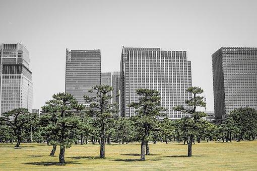 Tokyo, Japan, Park, Asia, City, Building, Architecture
